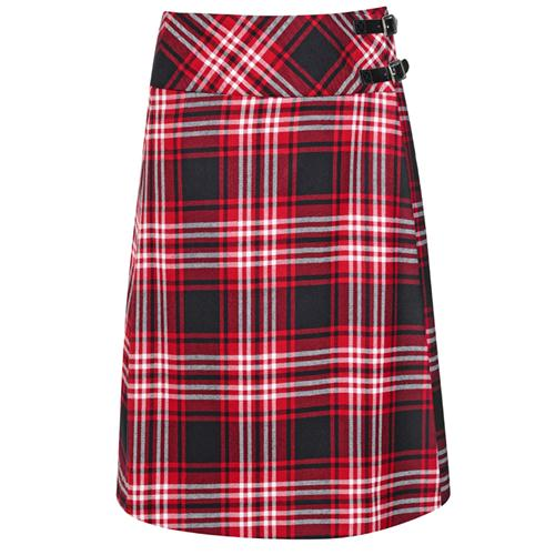 Alana A-Line Tartan Skirt in Tweedside